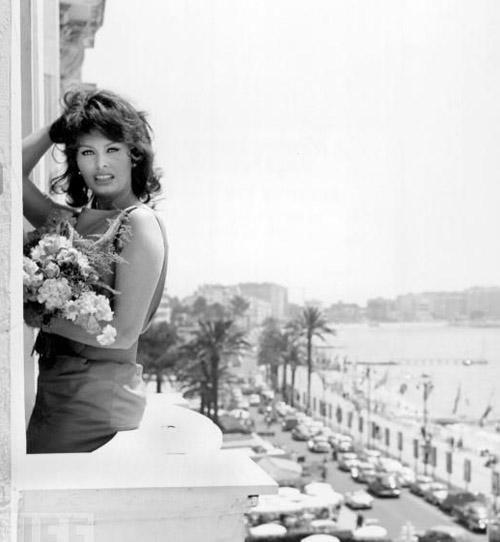 Cannes Film Fest - Sophia Loren
